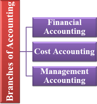 Branches of accounting system