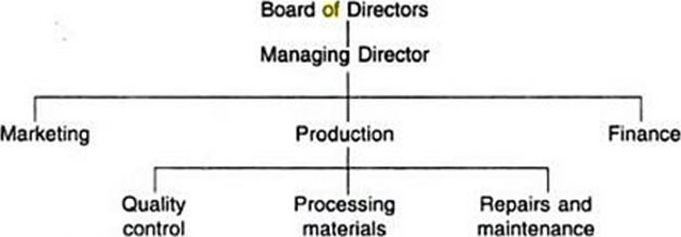 the organizational structure of a company