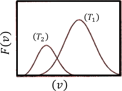 Probability distribution of speed vs speed: Choice B