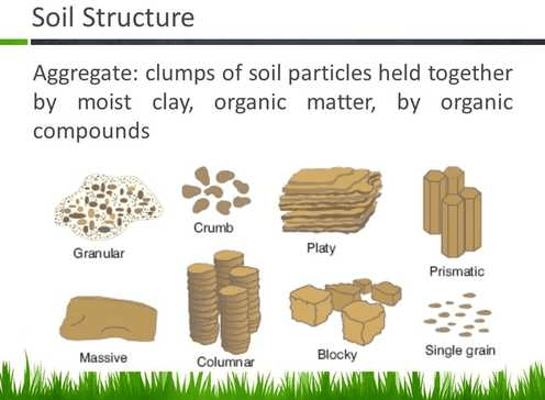 Image of Soil Structure