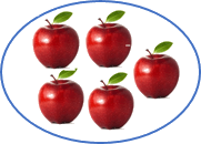 This diagram shows the apples in the circle