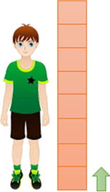 This figure shows the length of boy