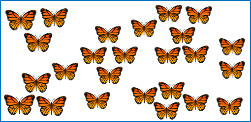 This image shows many butterflies are there in above box