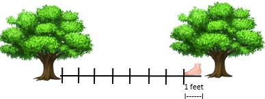 This figure shows the two flower trees