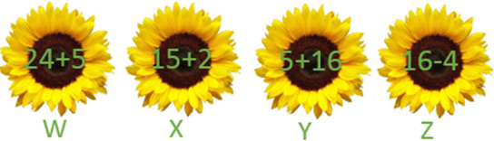 This figure shows arrange the given flowers