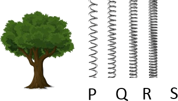 This figure shows the tree with four springs