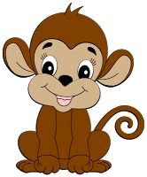 This image shows the monkey
