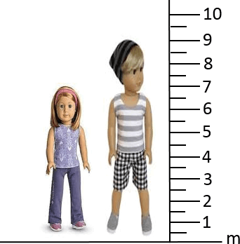 This figure shows the height of girl and boy