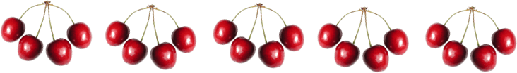 This image shows the 5 groups of cherries