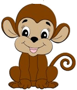 his image shows the different monkey – Choice A
