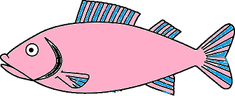 This image shows the water animal of fish – Choice C