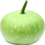 This image shows the green pumpkin