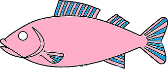This image shows the water animal of fish – Choice D