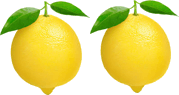 This image shows the two lemons