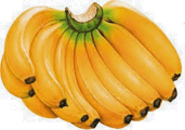 This image shows the bunches of bananas