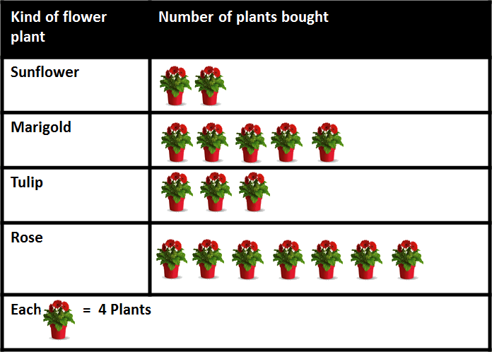 Image shows the number of flower plants Mr. Kant bought