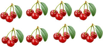 Bunch of cherry is given in image
