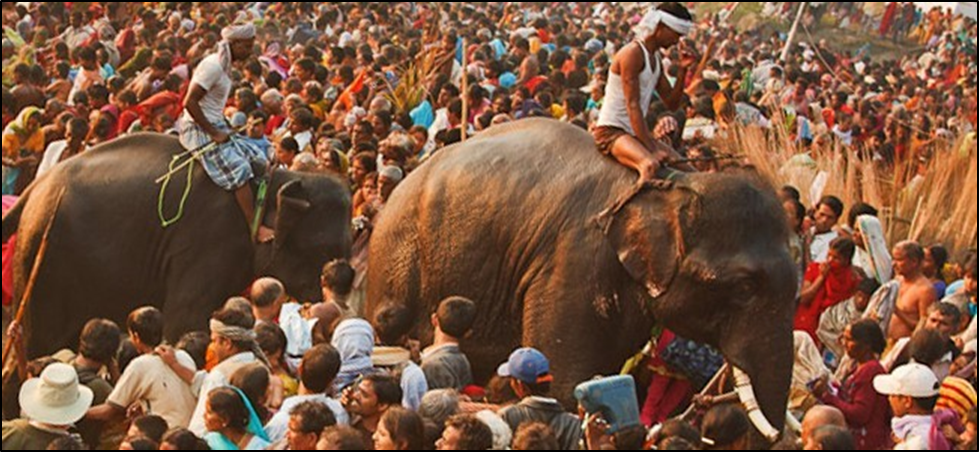 Image Shows Of The Sonepur festivals