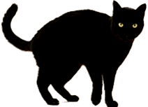 Image shows the A cat is standing in East – west direction