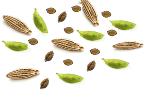 This figure shows are some edible seeds