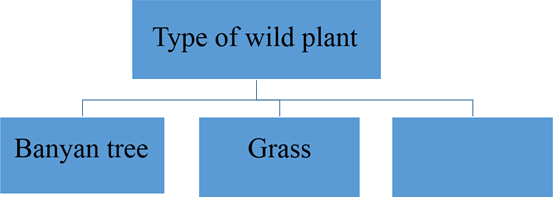 This image show type of wild plant