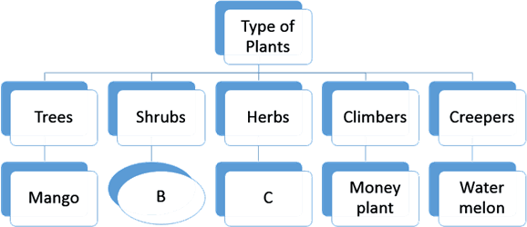 This diagram shows different types of plants