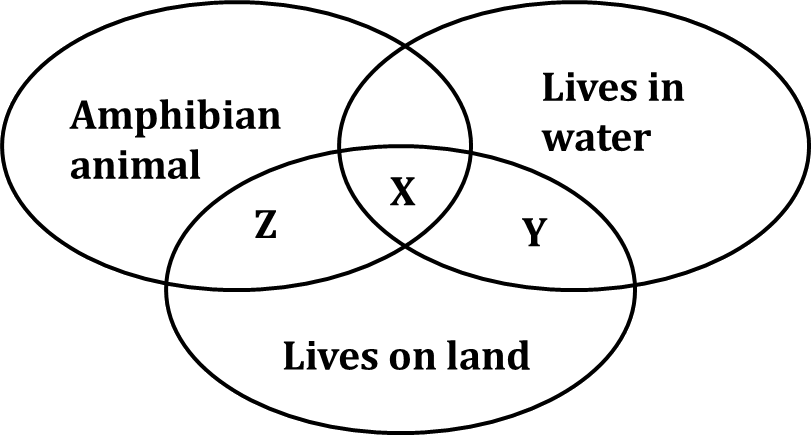 This figure shows the three different categories of animals