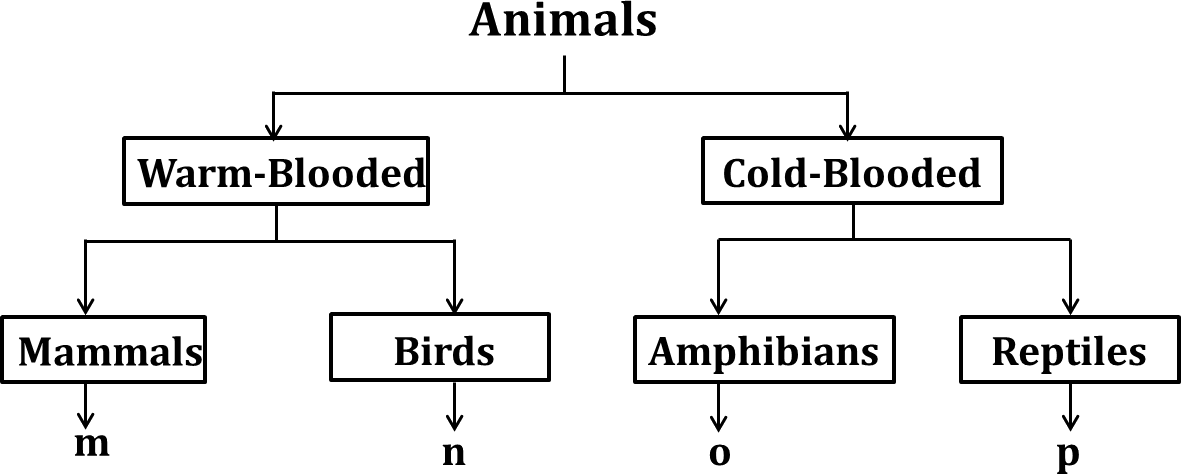 This chart showing the two types of animals