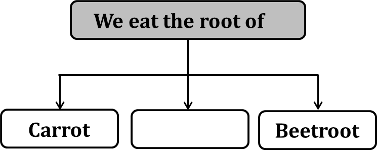 Flowchart shows the plant we eat as the root