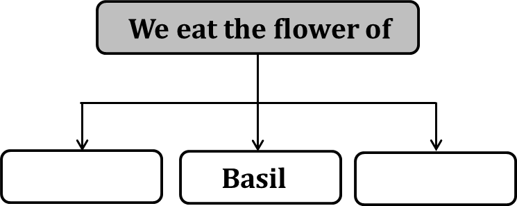 Flowchart shows the plant we eat as the flower