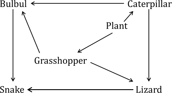 Diagram shows animal's food web