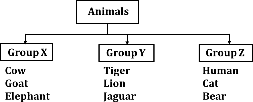 Diagram shows the group of animals chart