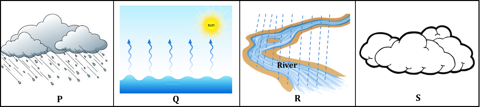 Diagram shows steps of the water cycle