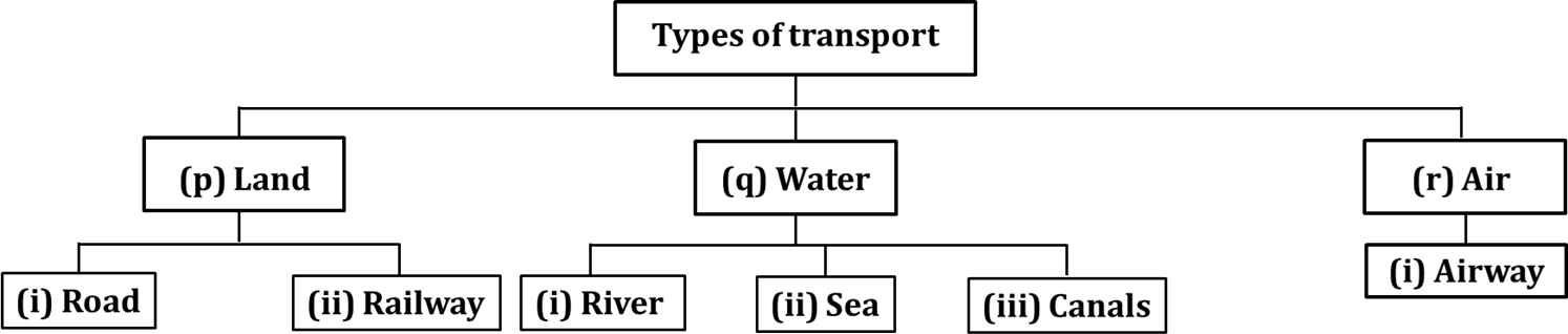 This flowchart shows various means of transport