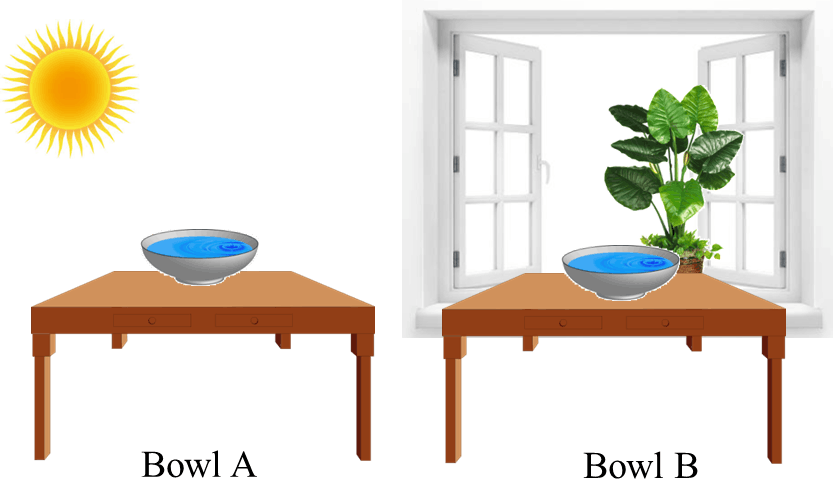 Table shows bowl A and bowl B in water