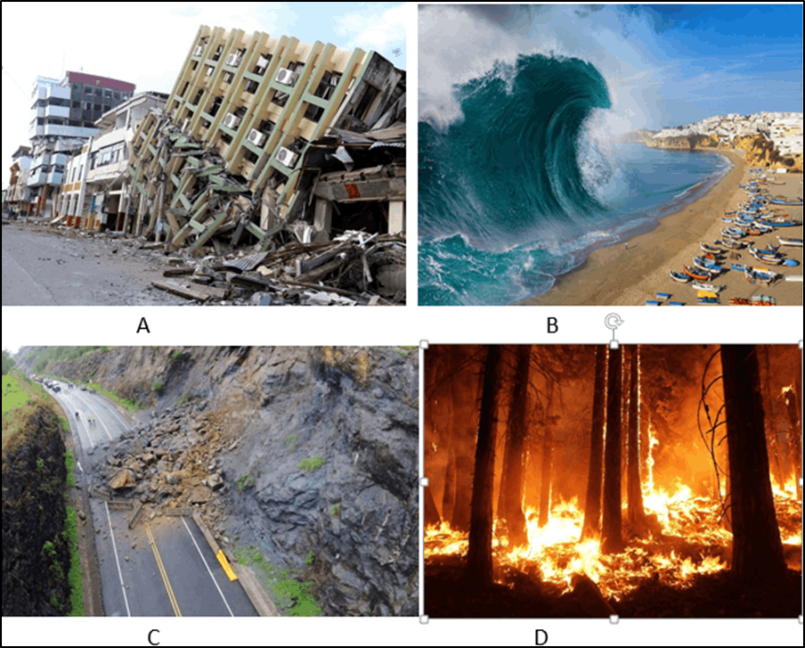 Image shows Natural Disaster