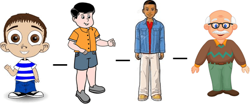 This picture shows the order of boys – Choice A