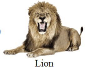 This image shows the Lion