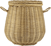 This image is basket to carry the fruits – Choice B