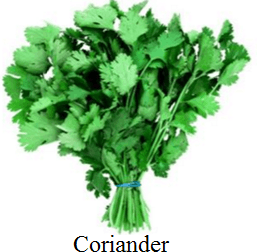 Hear this image of coriander choice A