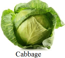 This image shows that the vegetables – Choice C