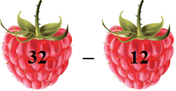 This figure shows raspberry