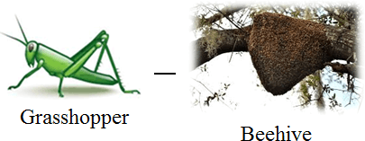 This figure is pair of animal and its home – Choice B
