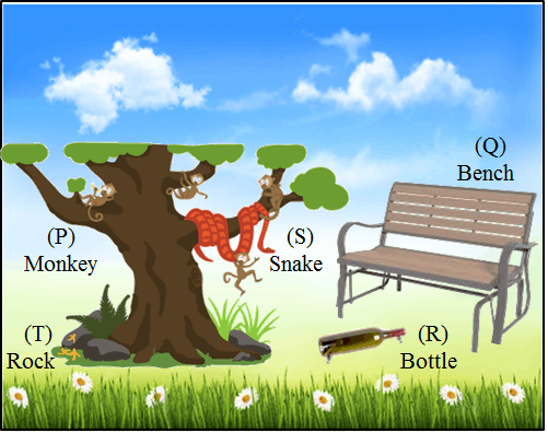shown bench, bottle, monkey, snake and rock in the earth