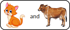 This image shown two pairs of animals – Choice C