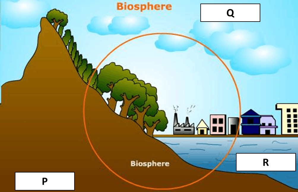 Image showing Biosphere Layers.