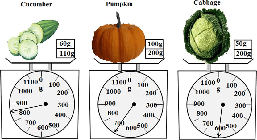Images of weight of cucumber, pumpkin and cabbage in gram