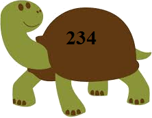 Tortoise with number –Choice D
