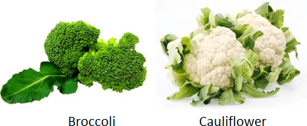 The image of broccoli and cauliflower