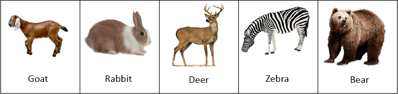 This image shows the animals group